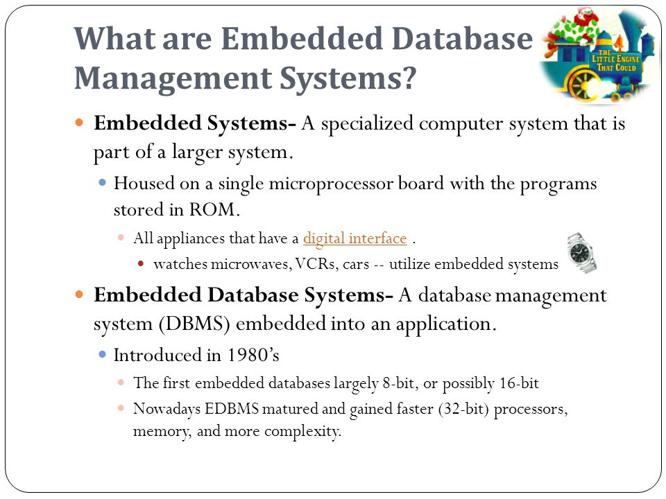 What are Embedded Database Management Systems.