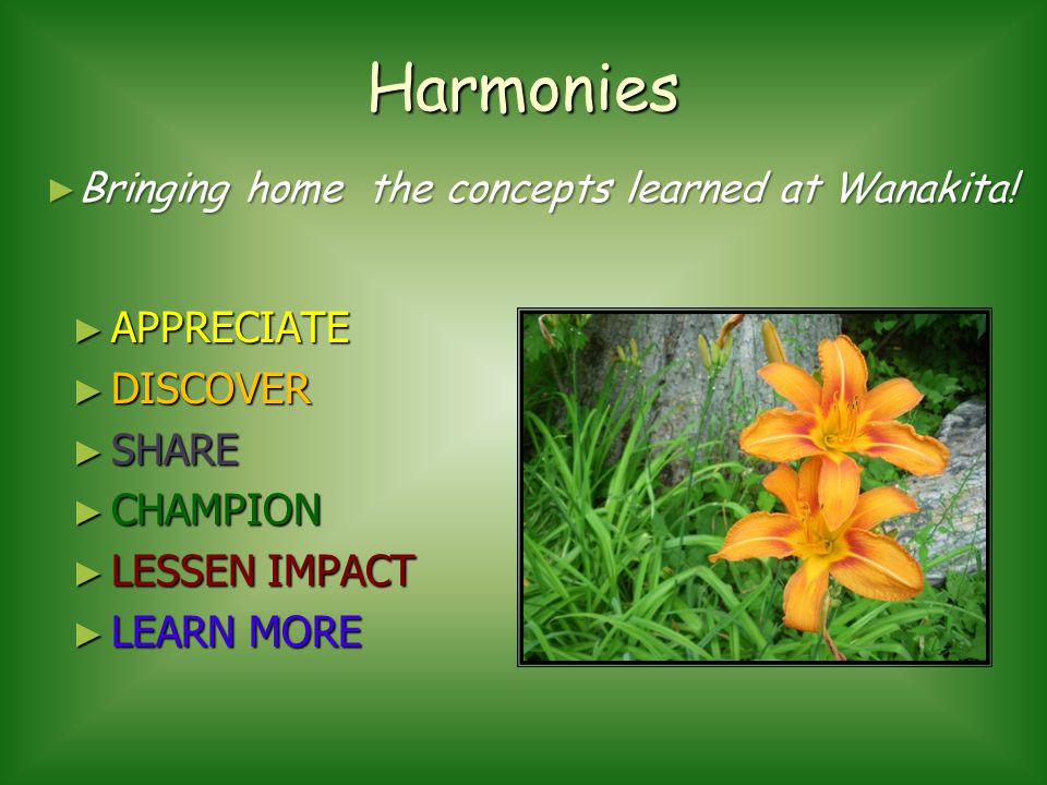 Harmonies APPRECIATE APPRECIATE DISCOVER DISCOVER SHARE SHARE CHAMPION CHAMPION LESSEN IMPACT LESSEN IMPACT LEARN MORE LEARN MORE Bringing home the concepts learned at Wanakita.