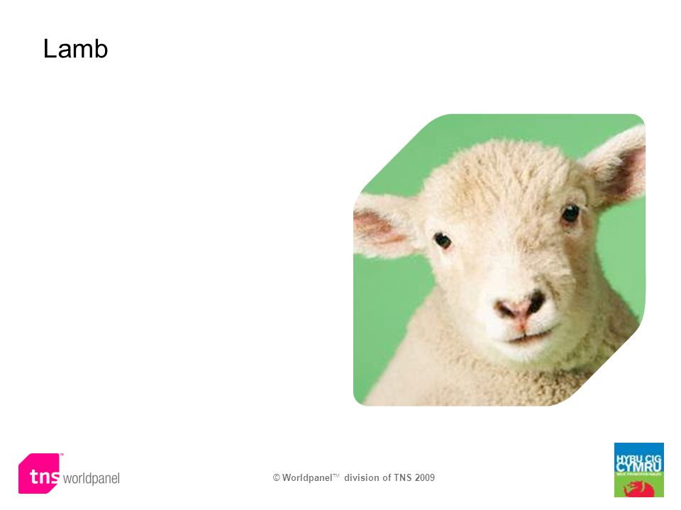 © Worldpanel TM division of TNS 2009 Lamb
