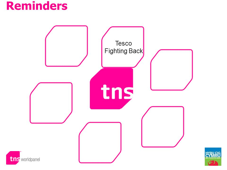 © Worldpanel TM division of TNS 2009 Reminders Tesco Fighting Back