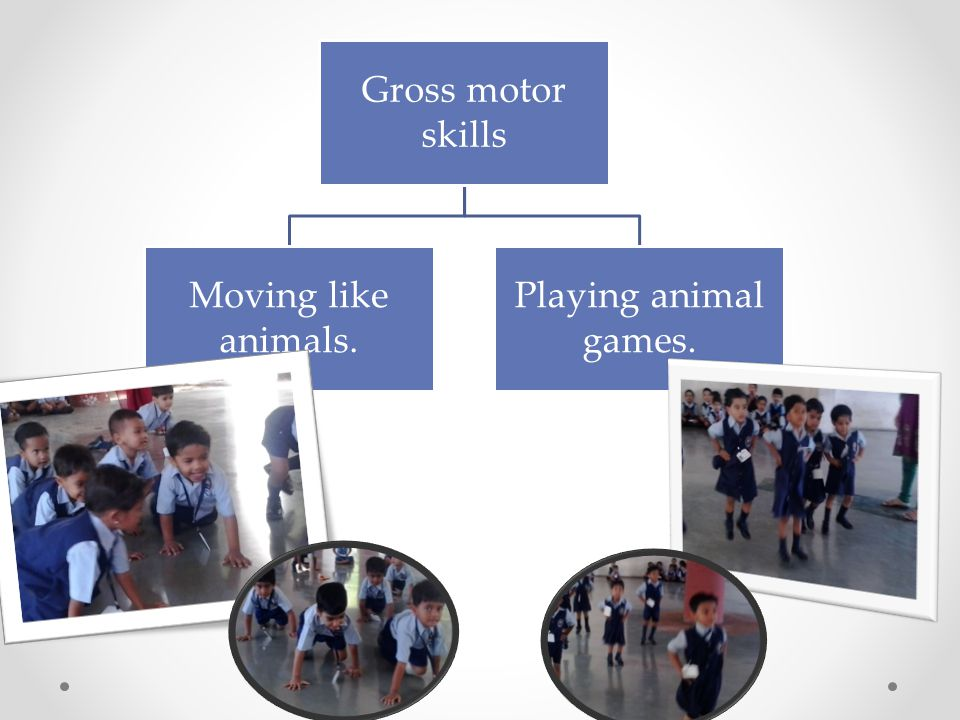 Gross motor skills Moving like animals. Playing animal games.