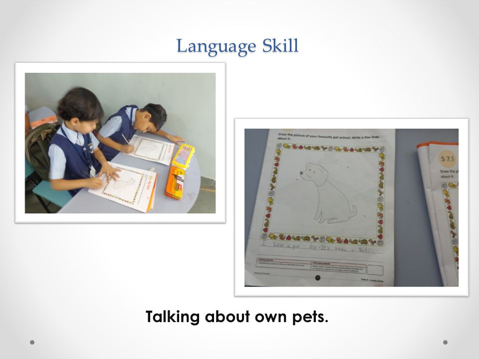 Language Skill Talking about own pets.