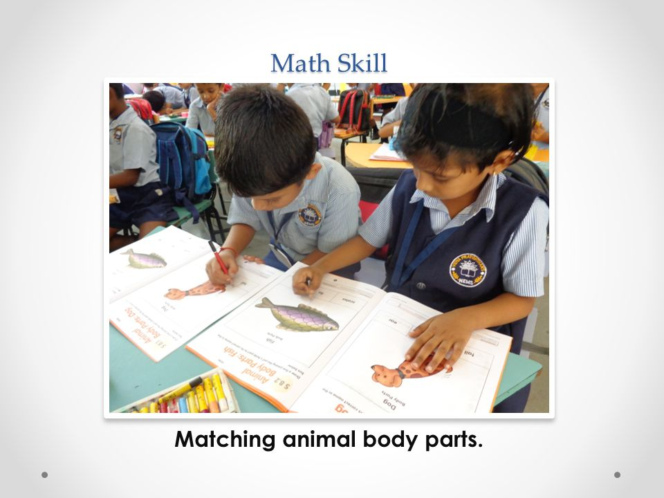 Math Skill Matching animal body parts.