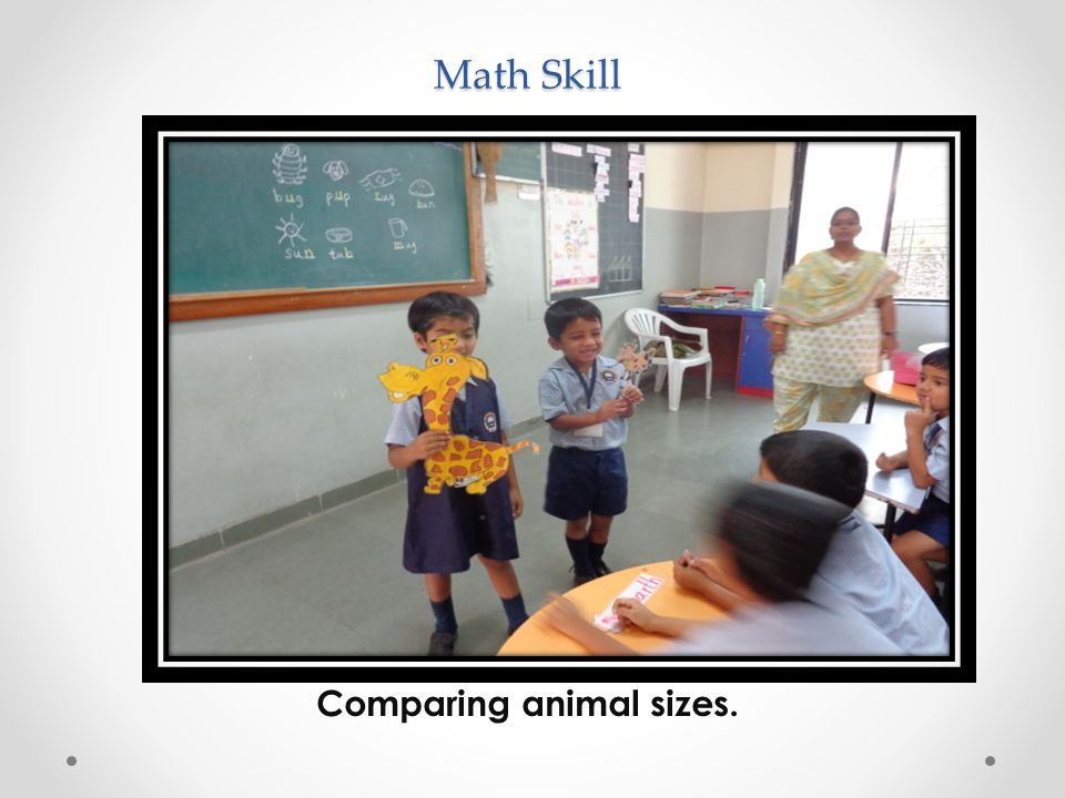 Math Skill Comparing animal sizes.