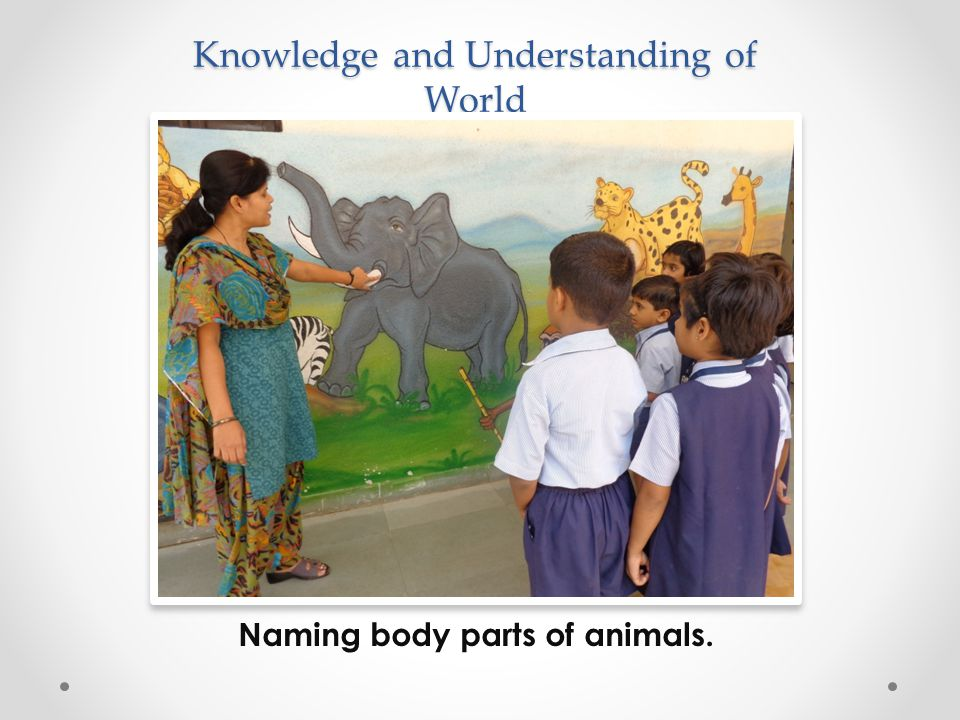 Knowledge and Understanding of World Naming body parts of animals.