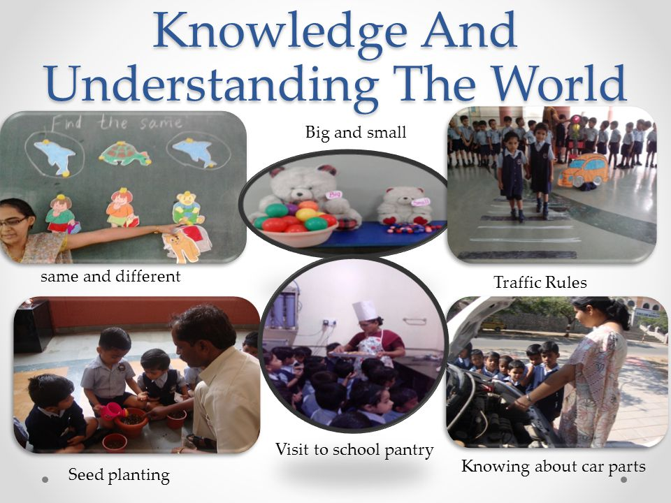 Knowledge And Understanding The World same and different Big and small Traffic Rules Seed planting Knowing about car parts Visit to school pantry
