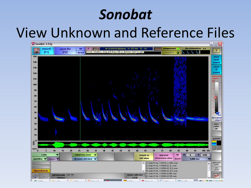 Sonobat View Unknown and Reference Files
