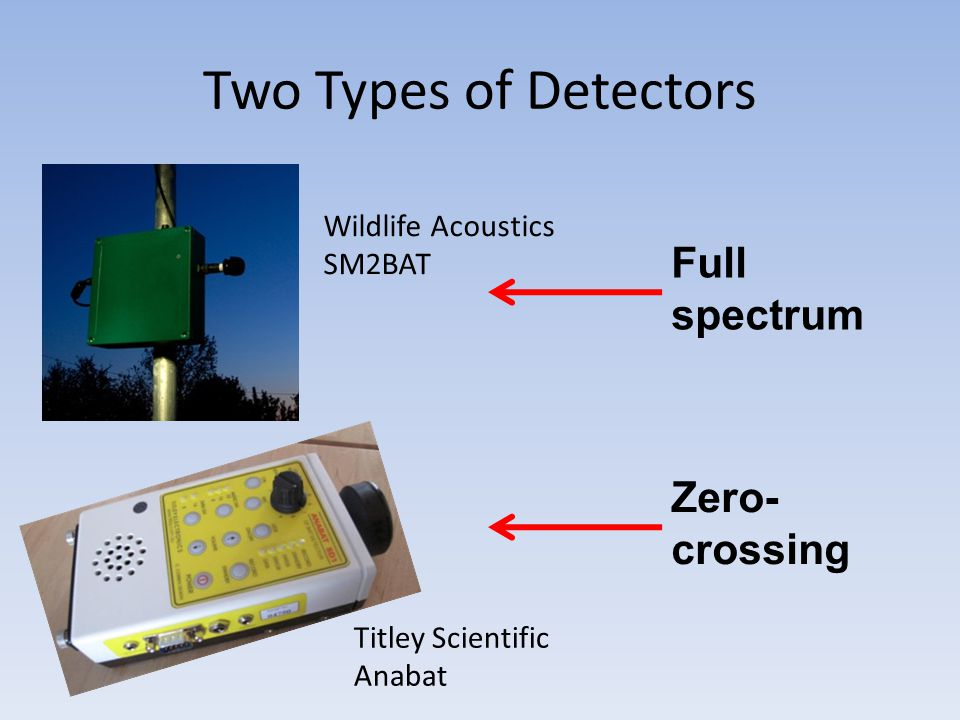 Two Types of Detectors Wildlife Acoustics SM2BAT Titley Scientific Anabat Full spectrum Zero- crossing