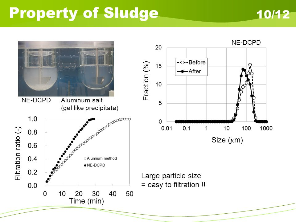 Property of Sludge 10/12 NE-DCPDAluminum salt (gel like precipitate) Size ( m) Fraction ( ) Large particle size = easy to filtration !! NE-DCPD Time (