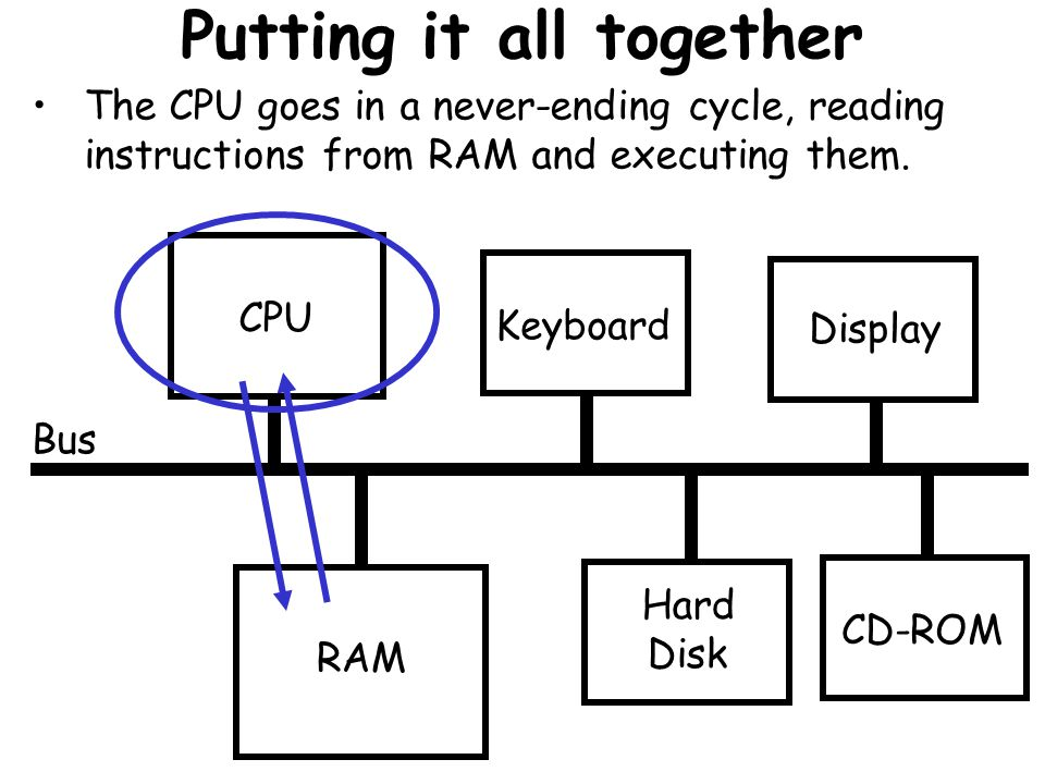 Putting it all together Bus CPU RAM Keyboard Hard Disk Display CD-ROM The CPU goes in a never-ending cycle, reading instructions from RAM and executin