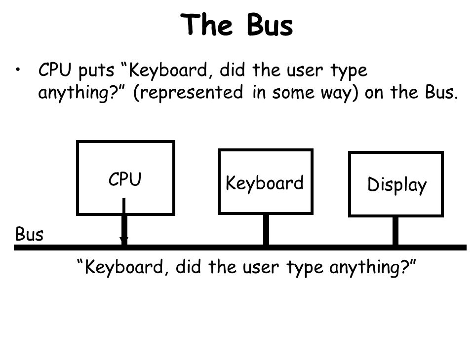 The Bus Bus CPU puts Keyboard, did the user type anything? (represented in some way) on the Bus. CPU Keyboard Display Keyboard, did the user type anyt