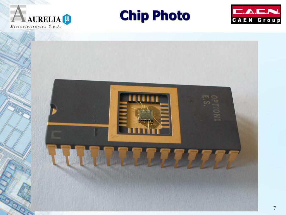 4/10/20067 Chip Photo