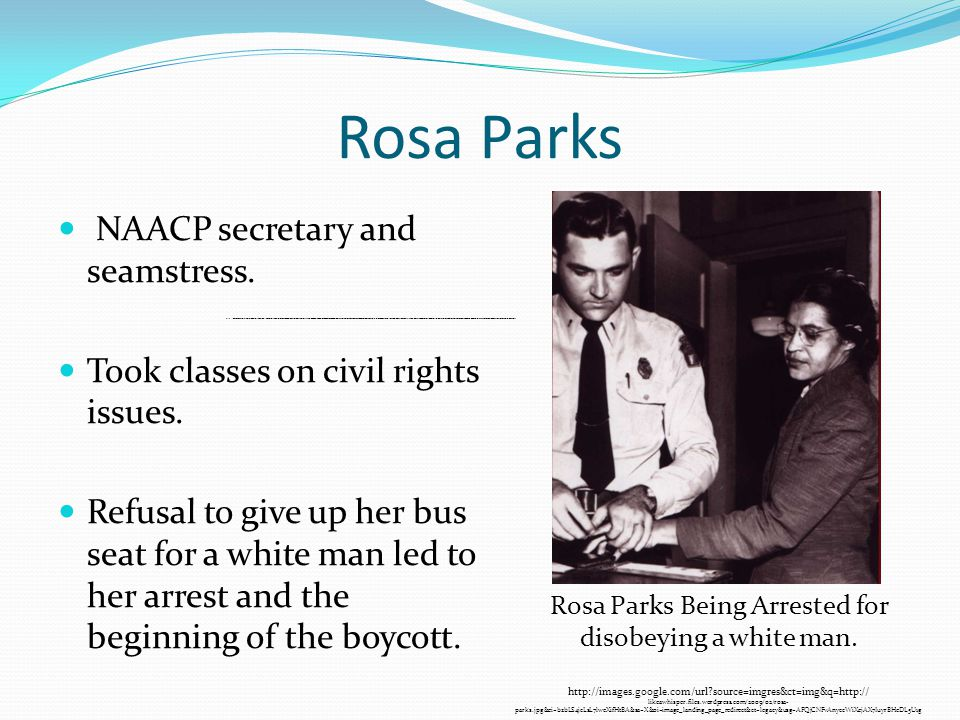Rosa Parks NAACP secretary and seamstress. Took classes on civil rights issues.