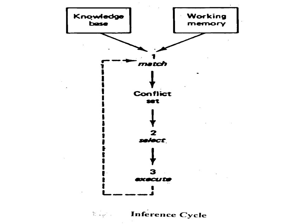 6.Underlying Network Undirected directed mixed Euclidean 7.