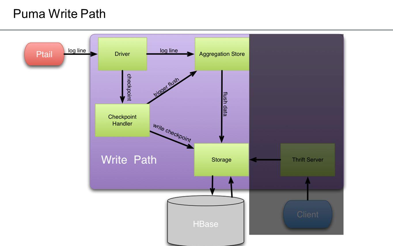 Puma Write Path