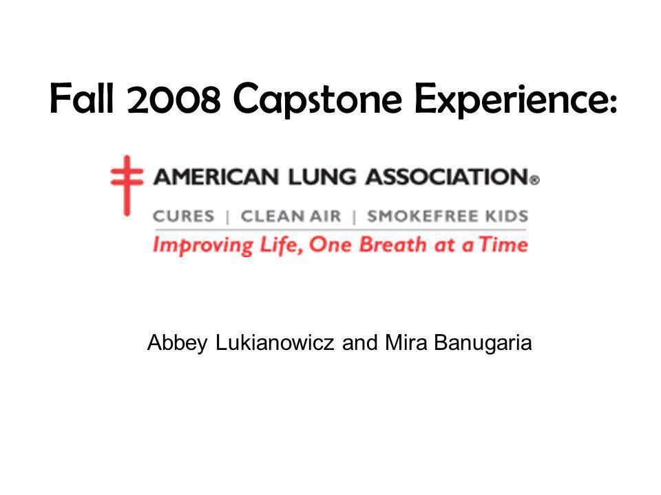 Fall 2008 Capstone Experience: Abbey Lukianowicz and Mira Banugaria