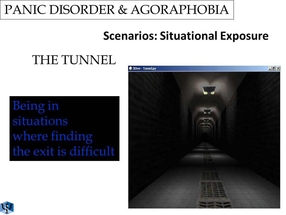 PANIC DISORDER & AGORAPHOBIA THE SHOPPING MALL Scenarios: Situational Exposure Go shopping Being in crowded places Being in line Being in narrow space