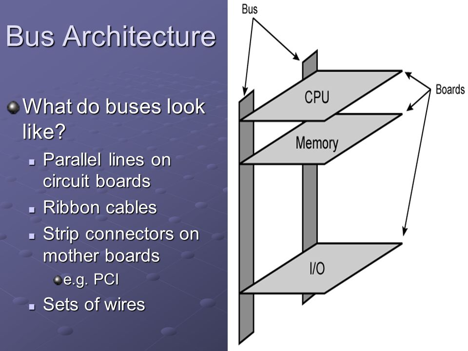 Bus Architecture What do buses look like? Parallel lines on circuit boards Parallel lines on circuit boards Ribbon cables Ribbon cables Strip connecto