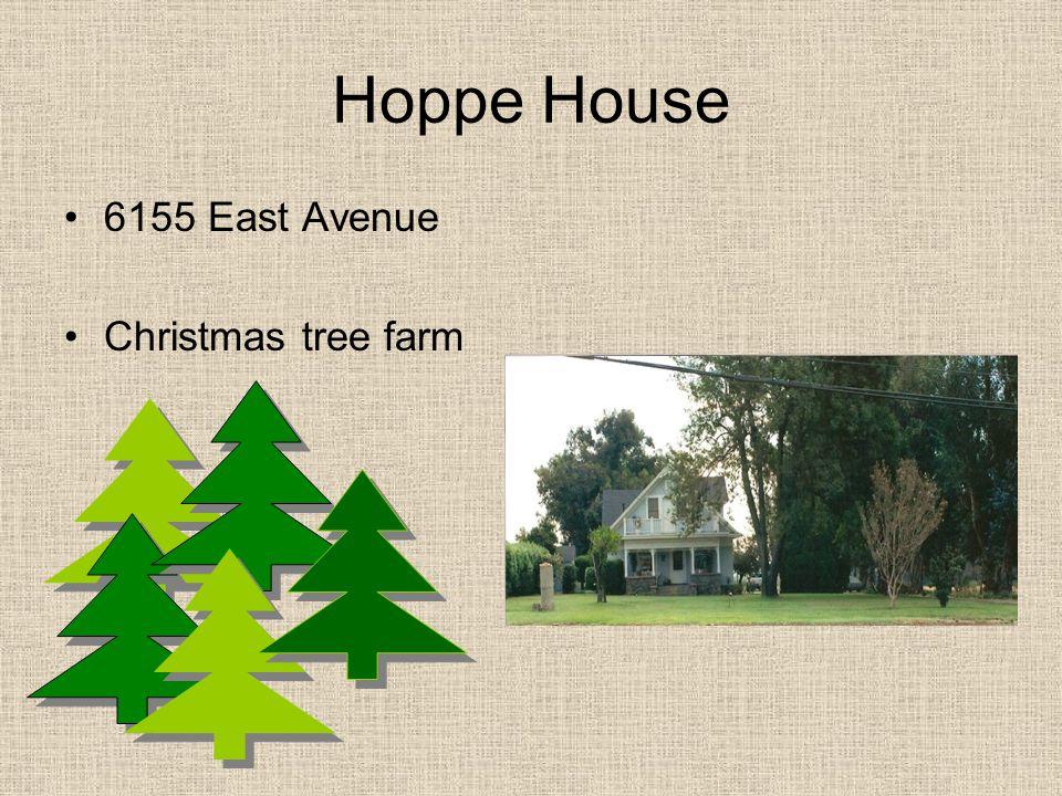 Hoppe House 6155 East Avenue Christmas tree farm
