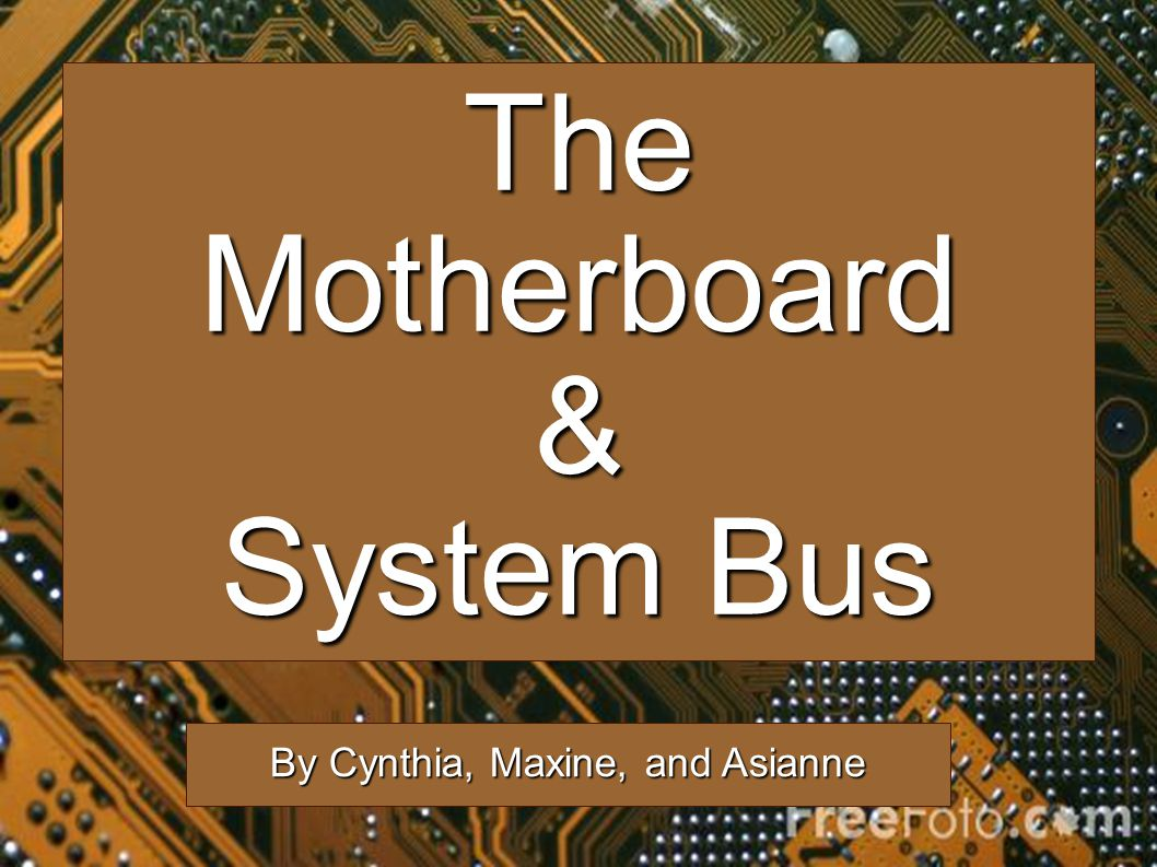 TheMotherboard& System Bus By Cynthia, Maxine, and Asianne