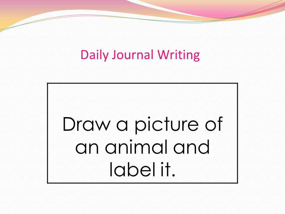 Daily Journal Writing Draw a picture of an animal and label it.