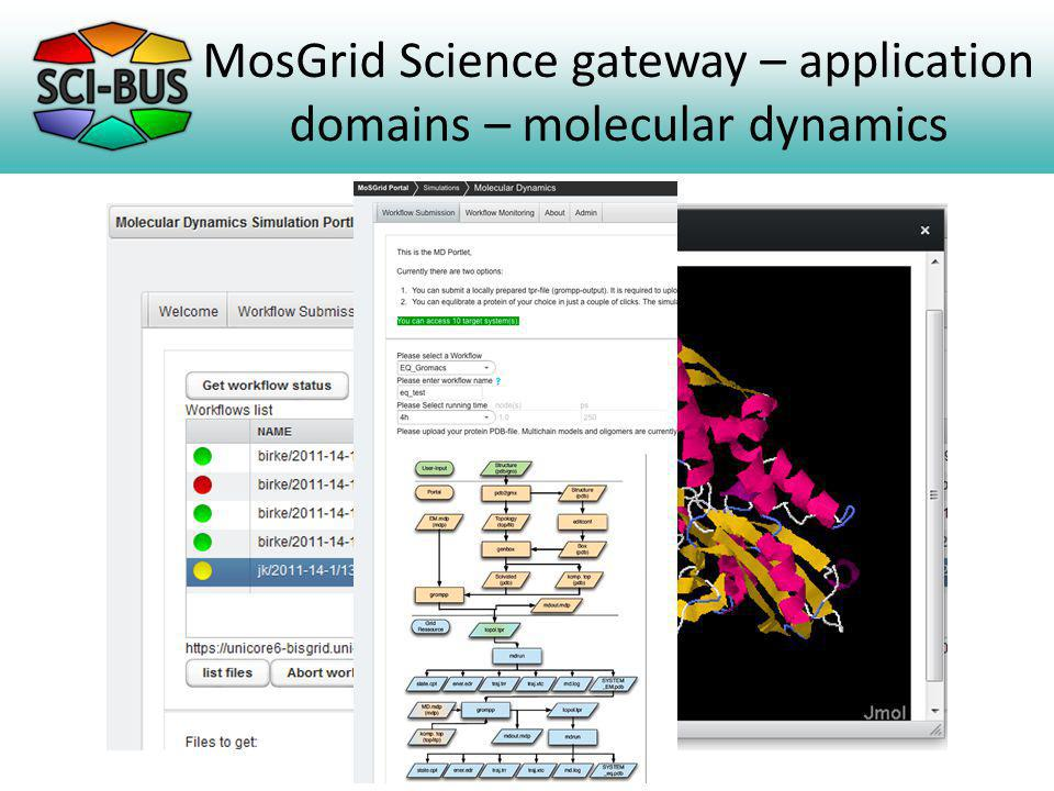 MosGrid Science gateway – application domains – molecular dynamics