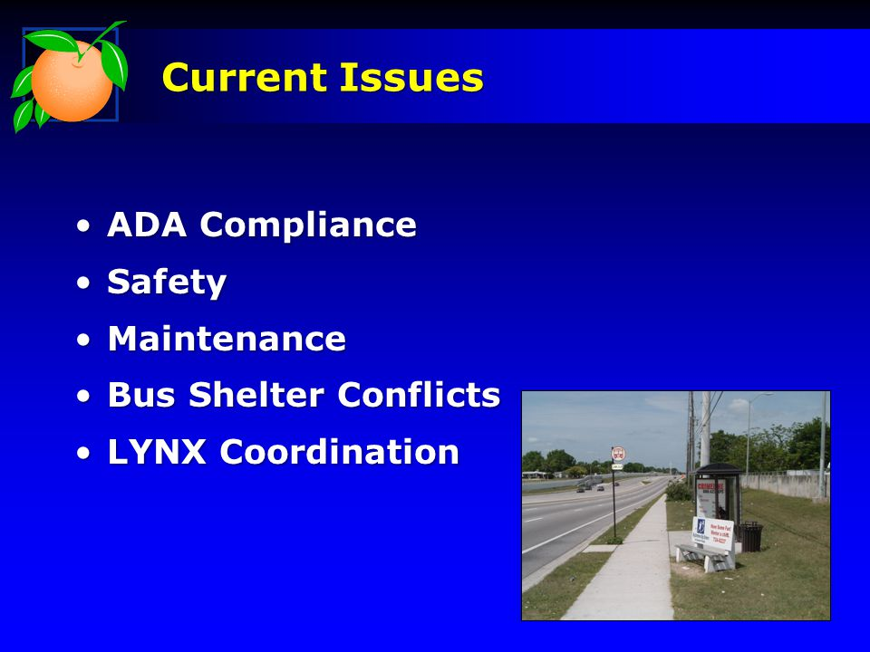 ADA ComplianceADA Compliance SafetySafety MaintenanceMaintenance Bus Shelter ConflictsBus Shelter Conflicts LYNX CoordinationLYNX Coordination Current Issues