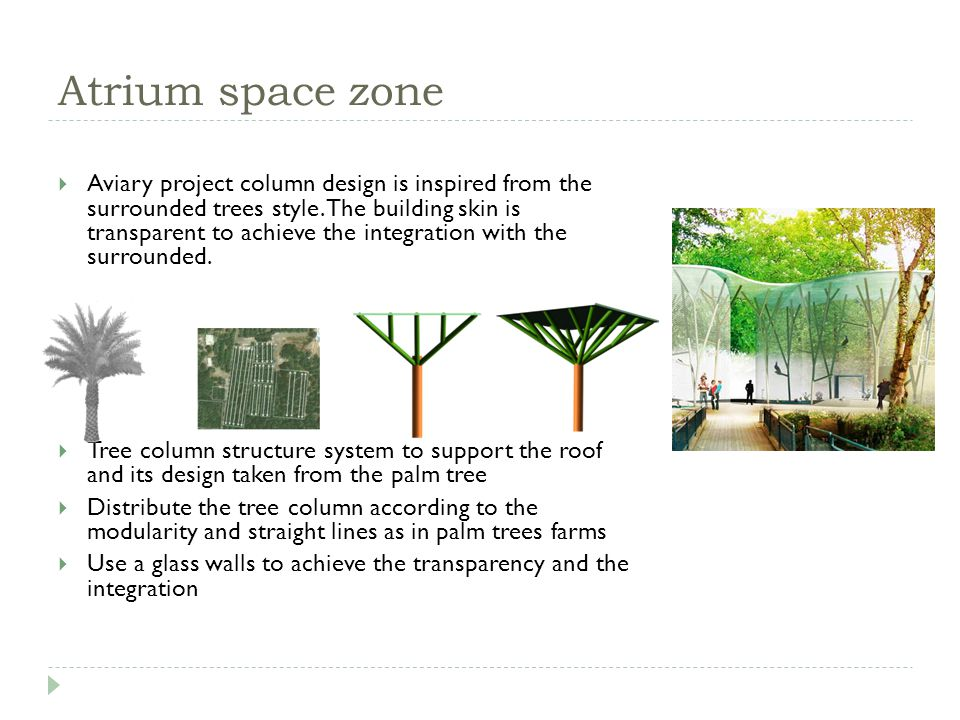 Atrium space zone Aviary project column design is inspired from the surrounded trees style.