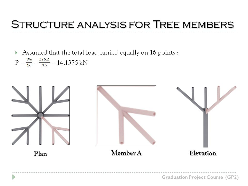Structure analysis for Tree members Graduation Project Course (GP2) Assumed that the total load carried equally on 16 points : P = = = 14.1375 kN Plan Member A Elevation