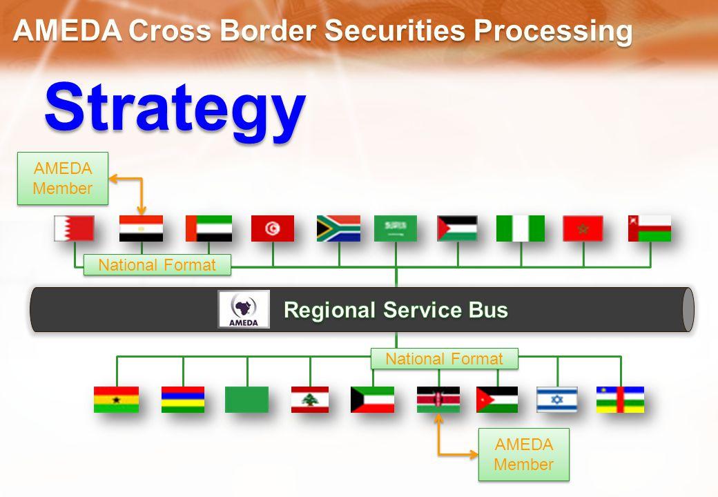 Strategy AMEDA Member National Format AMEDA Member