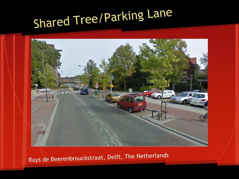 Shared Tree/Parking Lane Ruys de Beerenbrouckstraat, Delft, The Netherlands