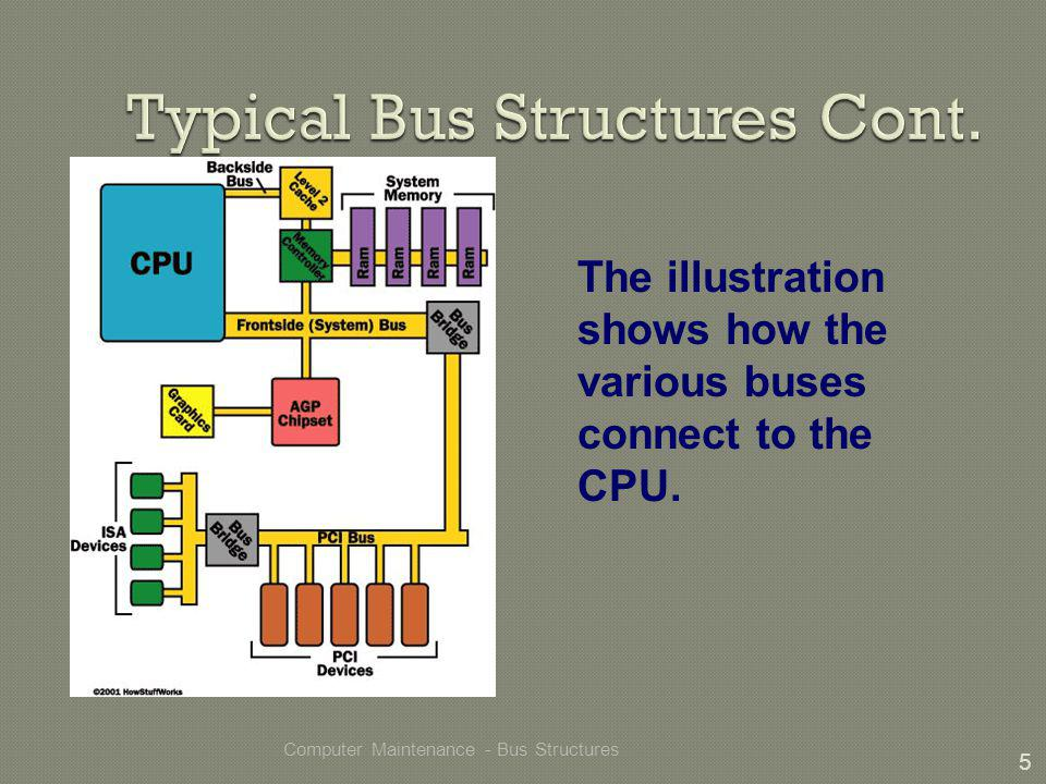 Computer Maintenance - Bus Structures 5 The illustration shows how the various buses connect to the CPU.