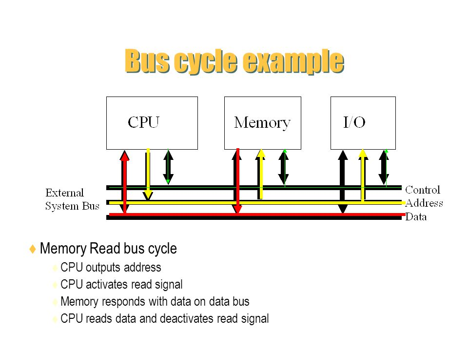 Bus cycle example Memory Read bus cycle CPU outputs address CPU activates read signal Memory responds with data on data bus CPU reads data and deactiv
