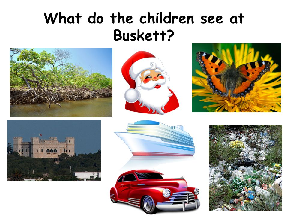 What do the children see at Buskett?