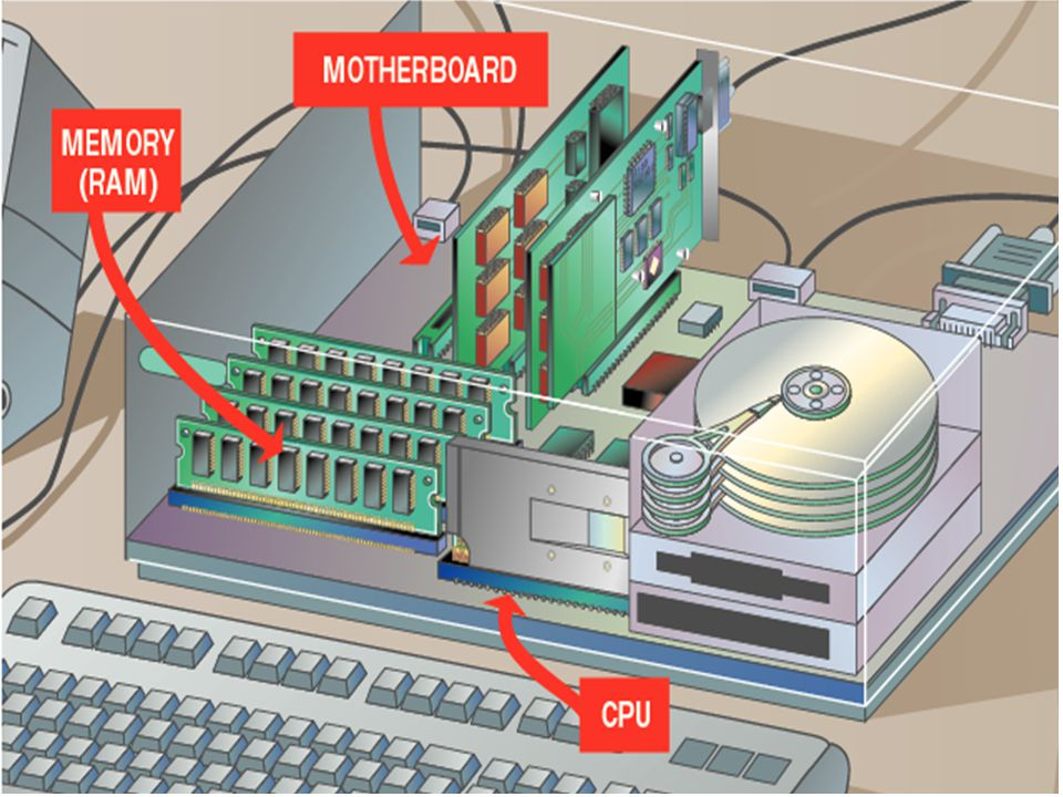 Processing takes place in the PC's central processing unit (CPU). The system's memory also plays a crucial role in processing data. Both the CPU and m