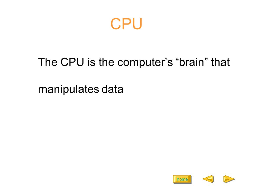 home CPU The CPU is the computers brain that manipulates data