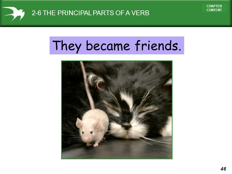 46 CHAPTER CONTENT They became friends. 2-6 THE PRINCIPAL PARTS OF A VERB