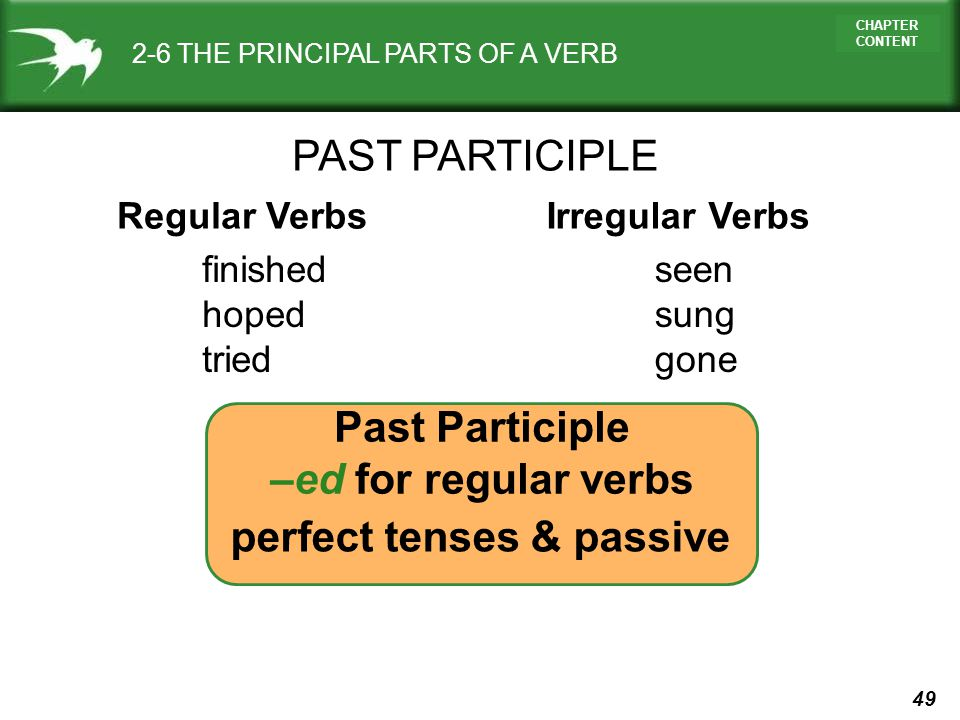 49 CHAPTER CONTENT 2-6 THE PRINCIPAL PARTS OF A VERB PAST PARTICIPLE Regular VerbsIrregular Verbs finished hoped tried Past Participle –ed for regular