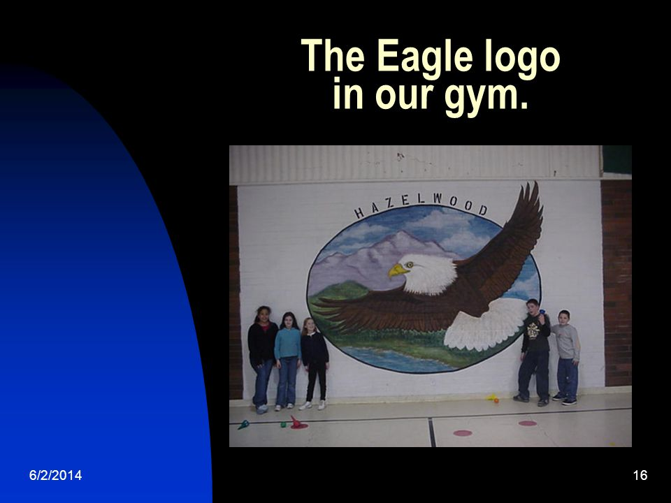 6/2/ The Eagle logo in our gym.