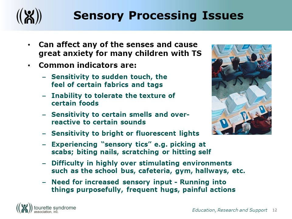 12 Education, Research and Support Sensory Processing Issues Can affect any of the senses and cause great anxiety for many children with TS Common indicators are: – Sensitivity to sudden touch, the feel of certain fabrics and tags – Inability to tolerate the texture of certain foods – Sensitivity to certain smells and over- reactive to certain sounds – Sensitivity to bright or fluorescent lights – Experiencing sensory tics e.g.