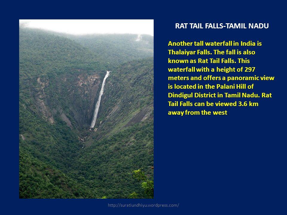 RAT TAIL FALLS-TAMIL NADU RAT TAIL FALLS-TAMIL NADU Another tall waterfall in India is Thalaiyar Falls. The fall is also known as Rat Tail Falls. This