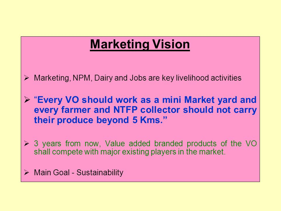 Marketing Vision Marketing, NPM, Dairy and Jobs are key livelihood activities Every VO should work as a mini Market yard and every farmer and NTFP collector should not carry their produce beyond 5 Kms.