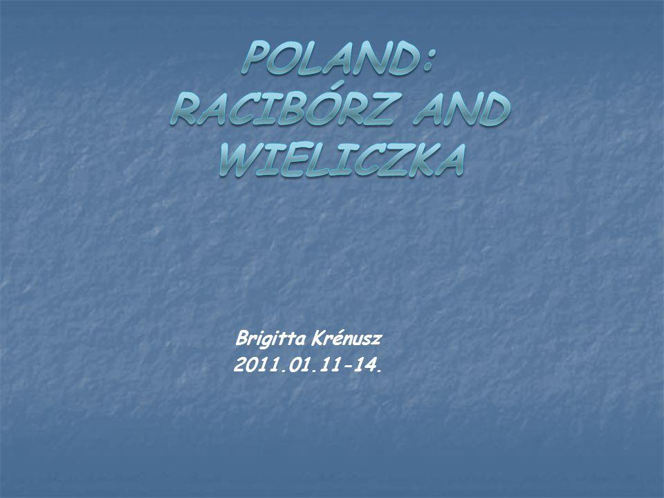 Brigitta Krénusz 2011.01.11-14.