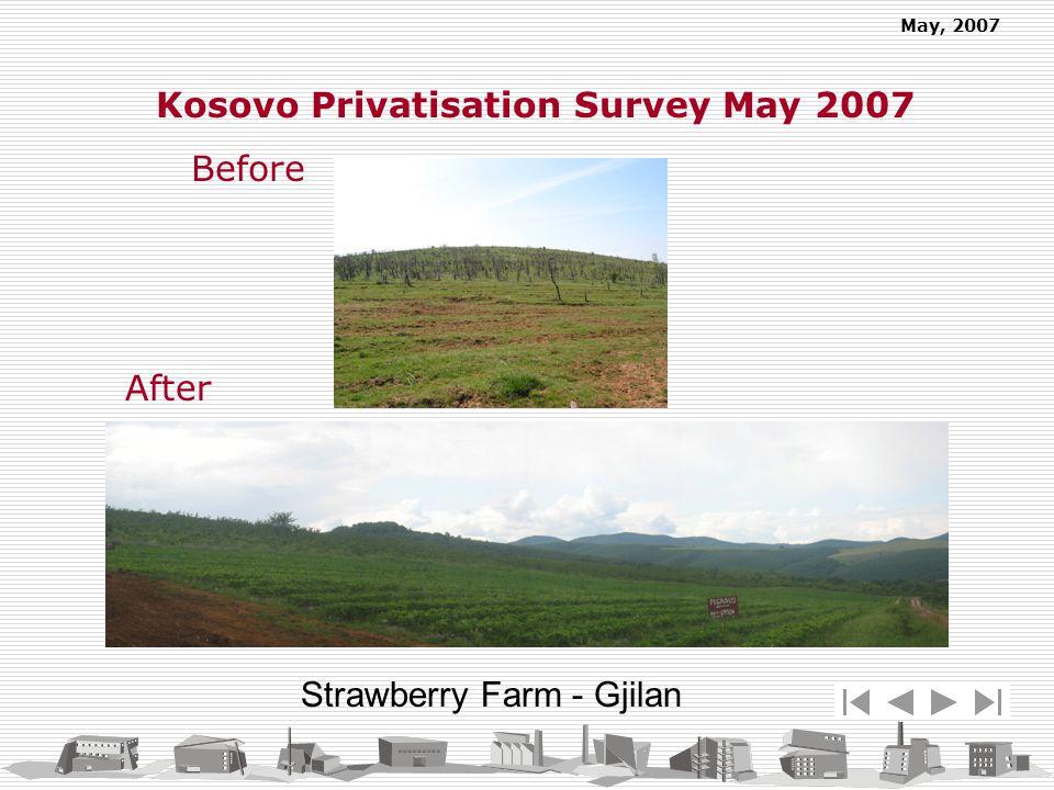 May, 2007 Strawberry Farm - Gjilan Before Kosovo Privatisation Survey May 2007 After