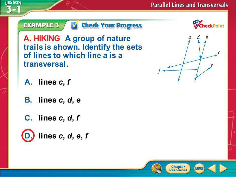 Example 3a A.lines c, f B.lines c, d, e C.lines c, d, f D.lines c, d, e, f A.