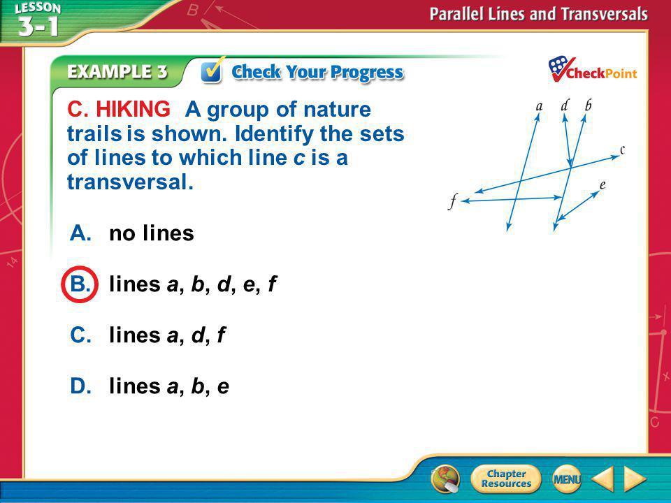 Example 3c A.no lines B.lines a, b, d, e, f C.lines a, d, f D.lines a, b, e C.