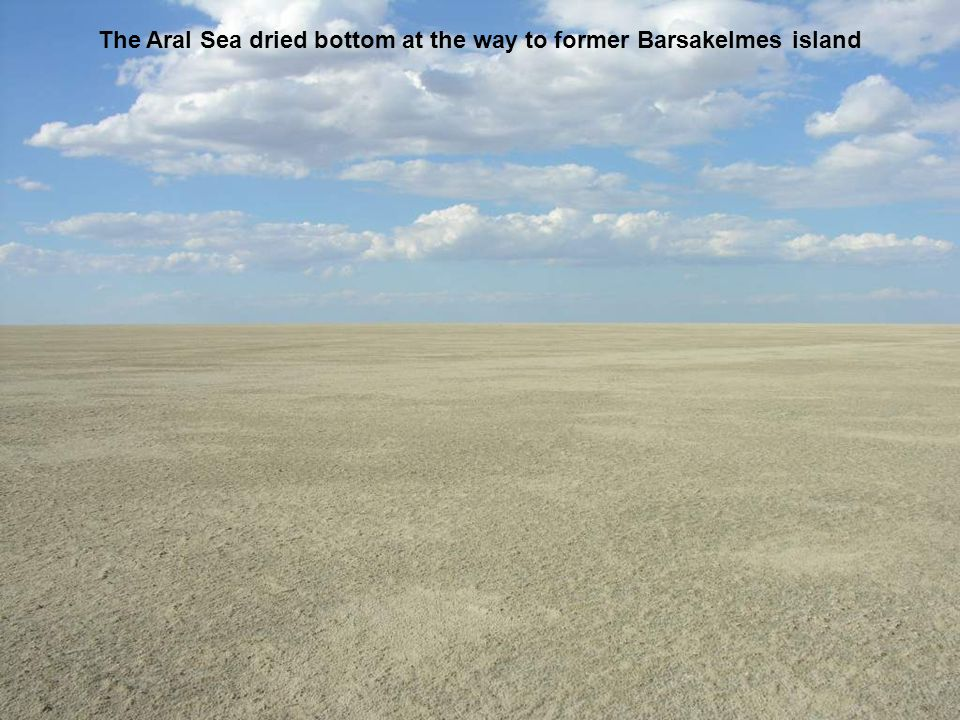 The Aral Sea dried bottom at the way to former Barsakelmes island
