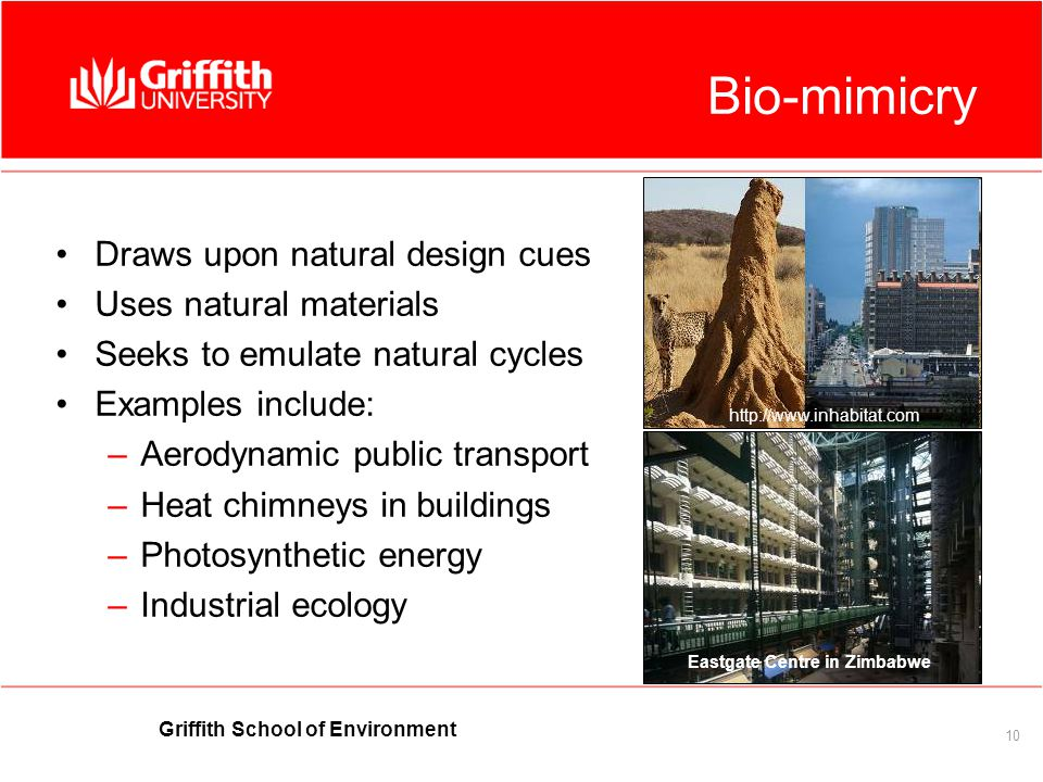 Griffith School of Environment 10 Bio-mimicry Draws upon natural design cues Uses natural materials Seeks to emulate natural cycles Examples include: –Aerodynamic public transport –Heat chimneys in buildings –Photosynthetic energy –Industrial ecology Eastgate Centre in Zimbabwe http://www.inhabitat.com