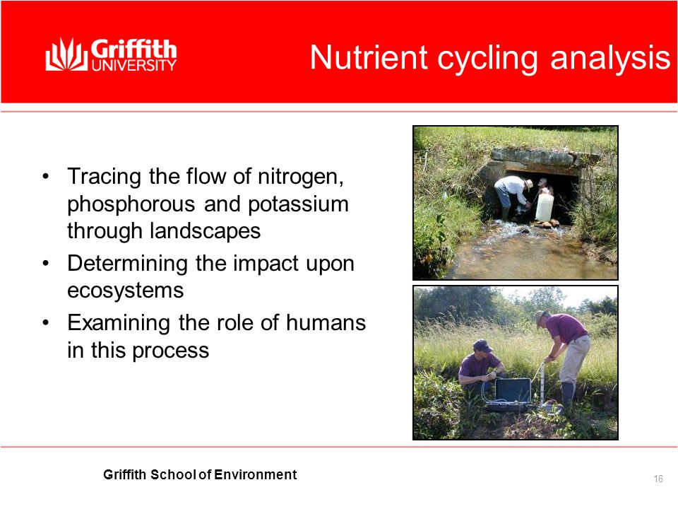 Griffith School of Environment 16 Nutrient cycling analysis Tracing the flow of nitrogen, phosphorous and potassium through landscapes Determining the impact upon ecosystems Examining the role of humans in this process