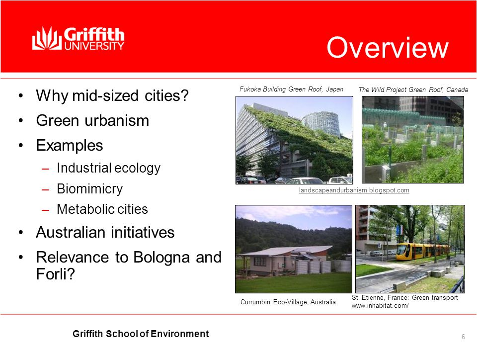 Griffith School of Environment 6 Overview Why mid-sized cities.
